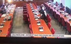 #Chlordécone : la commission d'enquête parlementaire révèle des violations délibérées de l'interdiction d'importation et d'usage