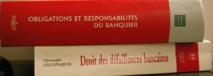 Responsabilité de l'Etat à raison d'une faute lourde commise par la Commission bancaire lors de sa mission de surveillance d'un établissement de crédit